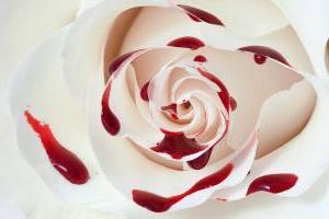 Фото: Маточное кровотечение или месячные