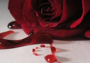 Фото: Маточные кровотечения как остановить
